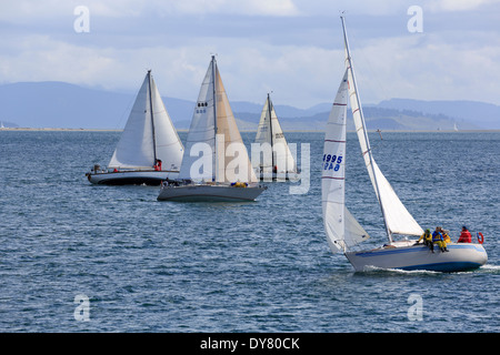 Sailing yachts in a close race near Sidney, Vancouver Island, Canada - Stock Photo