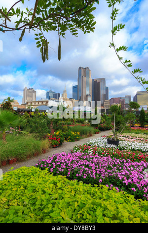 ... Colourful, Dallas, Farmers Market, Garden Center, Nursery, Ruibal,  Skyline,