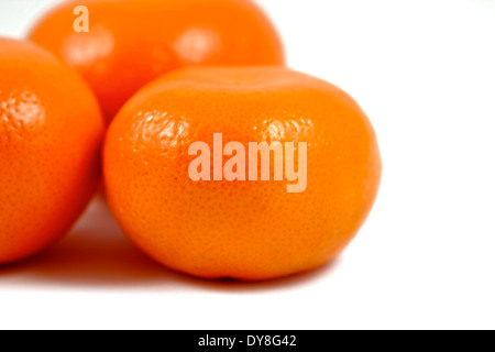 Satsuma oranges white background studio image - Stock Photo