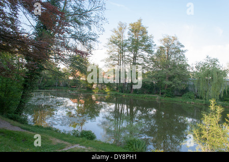 Pond in the garden of the Castle St. Peter in der Au - Stock Photo