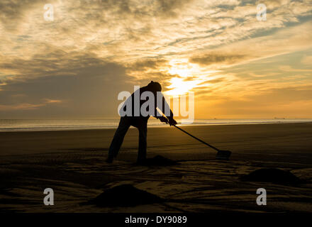 The Headland, Hartlepool, UK. 10th April, 2014. Seacoaler at sunrise on a glorious Thursday morning on the north - Stock Photo