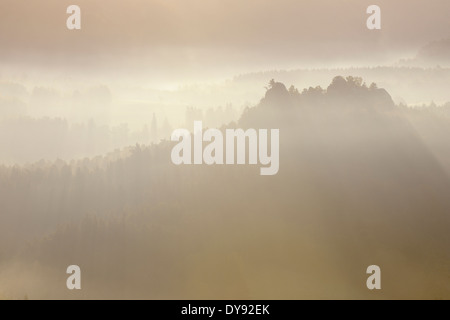 Germany, Saxony, National Park Saxon Switzerland, Elbe Sandstone Mountains, view from Bastei area to forest at sunrise - Stock Photo