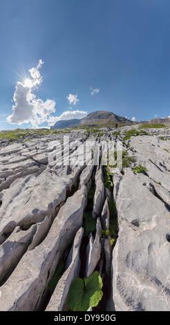 Karst, erosion, Col du Sanetsch, landscape, summer, mountains, hills, Conthey, Wallis, Valais, Switzerland, Europe, - Stock Photo