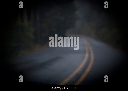 A dark, rainy, foggy road, near Cape Lookout, Oregon Coast, United States - Stock Photo