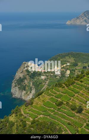 Europe, mediterranean, riviera, italian, Italy, Cinque Terre, Corniglia, vineyards, landscape, coast, coastal, vertical - Stock Photo