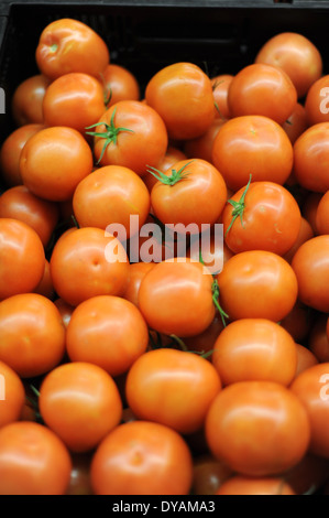 Tomatoes sold at Walmart in Tapachula, Mexico. - Stock Photo
