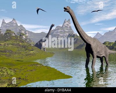 Brachiosaurus dinosaurs walking in a stream on a beautiful day. - Stock Photo
