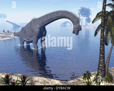 Brachiosaurus dinosaur walking in water by morning light. - Stock Photo