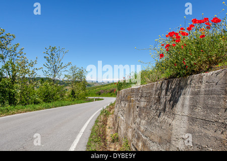 Asphalt road among green hills and red poppies under blue sky in Piedmont, Northern Italy. - Stock Photo