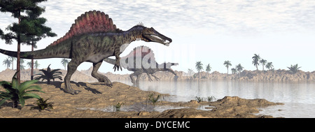 Two Spinosaurus dinosaurs walking to the water in a desert landscape. - Stock Photo