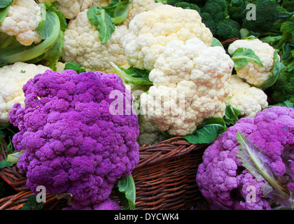White and Purple Cauliflower in a straw basket at the Farmers market - Stock Photo