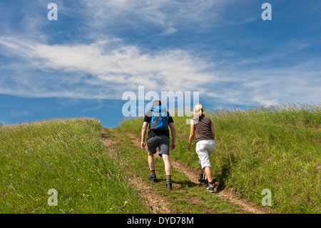 Young couple walking along a farm track across a summer meadow under blue sky, Baden-Wuerttemberg, Germany - Stock Photo