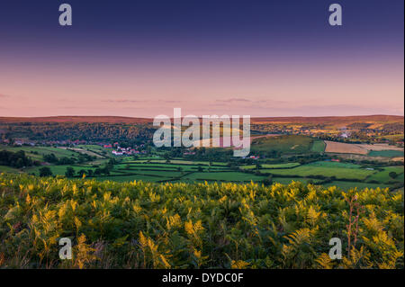 View of Rosedale in the North York Moors National Park. - Stock Photo