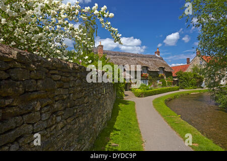 A thatched cottage at Thornton le Dale. - Stock Photo