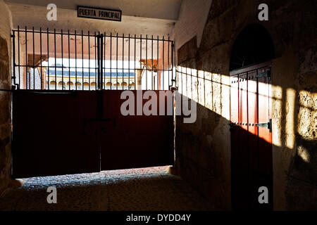 Light filters through the principal gate to the Plaza de toros de la Real Maestranza. - Stock Photo