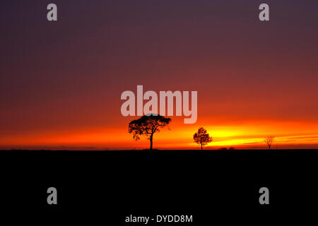 A stormy sunset over farmland by the village of Oby in Norfolk. - Stock Photo