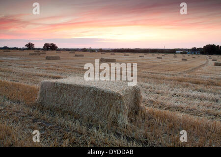 Sunset over farmland in the village of Martham. - Stock Photo