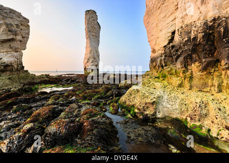 The bottom of the cliffs at Old Harrys Rock on a very low tide. - Stock Photo