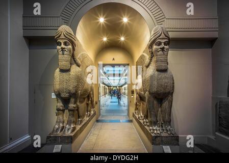 Egyptology in the British Museum. - Stock Photo