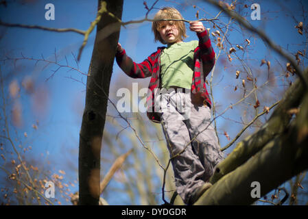 Seven year old boy climbing a tree.
