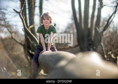 Seven year old boy climbing a tree. - Stock Photo