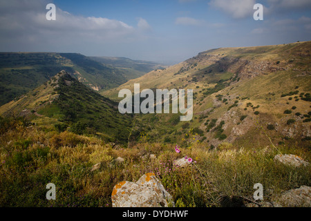 Gamla Nature reserve, Golan Heights, Israel. - Stock Photo