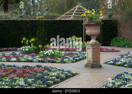 Colourful Bedding plants in a formal Garden at RHS Wisley Gardens, Surrey, England - Stock Photo
