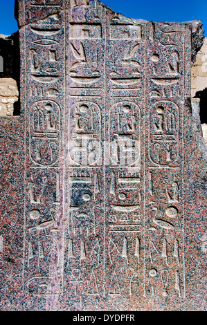 Temple of Ramses III (1198-1167 b.C. – XX° Dyn.) at Medinet Habu: reliefs on the statue in the  courtyard - Stock Photo