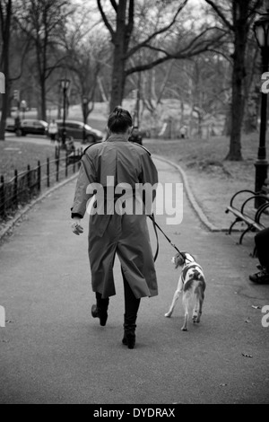 A dog walker in Central Park, New York - Stock Photo