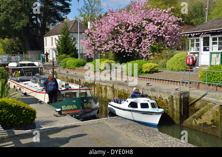 Boats in spring going through  Marsh Lock on the River Thames in the Thames Valley near Henley-on-Thames,Oxfordshire, - Stock Photo