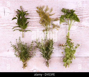 Italian herbs in bundle on white wooden background, top view - Stock Photo