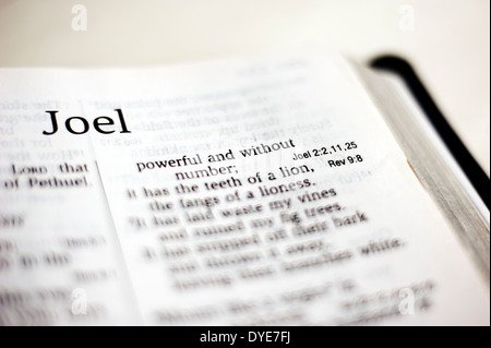 Book of JOEL of the Holy bible Stock Photo: 4556504 - Alamy
