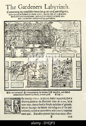The Gardener's Labyrinth or The Gardeners Labyrinth was an early popular book about gardening. It was written by - Stock Photo
