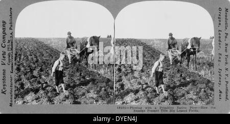 Ploughing with a primitive native plough or how. A Russian peasant tills his leased field - Stock Photo