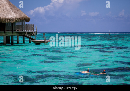 Newlywed couple snorkeling by thatched roof overwater bungalows on vacation in French Polynesia - Stock Photo