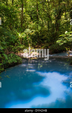 Signature turquoise blue water in the Rio Celeste flows through forest, Tenorio Volcano National Park, Costa Rica. - Stock Photo