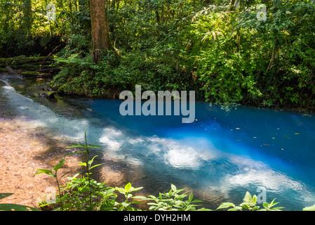 Source of the signature turquoise blue water in the Rio Celeste, Tenorio Volcano National Park, Costa Rica. - Stock Photo