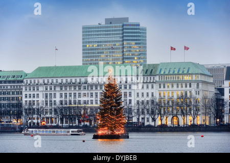 Alstertanne auf der Binnenalster vor dem Hotel Vier Jahreszeiten in Hamburg, Deutschland, Europa - Stock Photo