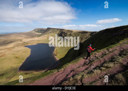 Female hill walker hiking towards Waun Lefrith above Llyn Y Fan Fach, Black Mountain, Brecon Beacons national park, - Stock Photo