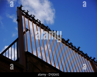 Cactus anti-burglary / theft / crime security / protection measures on a fence - Stock Photo