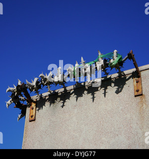 Cactus anti-burglary / theft / crime security / protection measures on a wall - Stock Photo