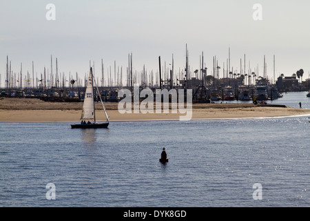 A sailboat entering the harbor (harbour) in Santa Barbara, California with moored fishing boats in background. - Stock Photo