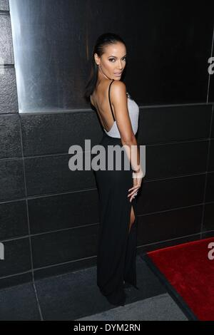New York, NY, USA. 21st Apr, 2014. Selita Ebanks at arrivals for New Yorkers For Children New Year's in April: A - Stock Photo