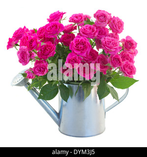 posy of blossoming pink roses in watering can - Stock Photo