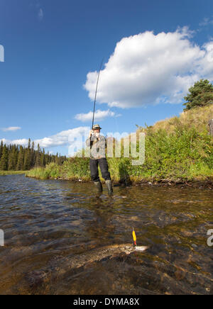 Man spin fishing for Northern Pike (Esox lucius), Caribou Lakes, head waters of the Liard River, Yukon Territory, - Stock Photo
