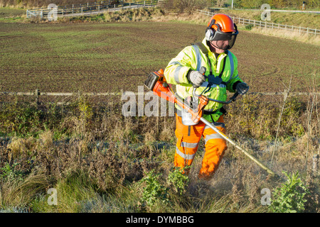 Strimming long grass. Man using a strimmer and cutting grass and weeds on a road verge , Nottinghamshire, England, - Stock Photo