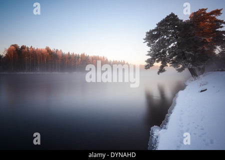 Misty morning by the river in winter - Stock Photo