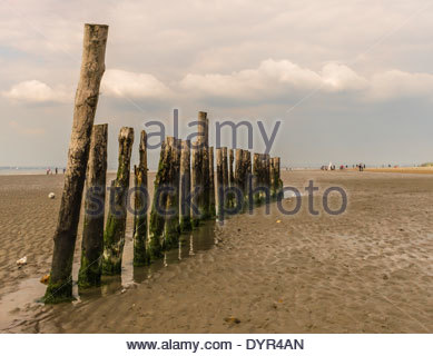 The mid beach breakwater at West Wittering, West Sussex. Taken on Easter Monday 2014 - Stock Photo
