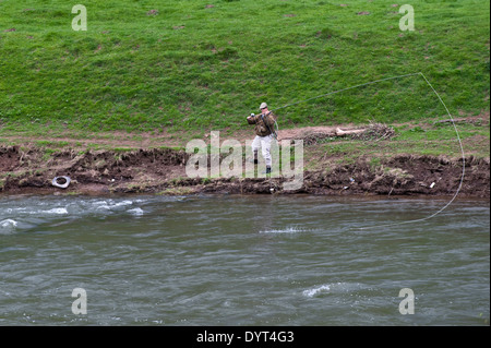 Angler fly fishing for salmon from the riverbank on River Wye Monmouthshire South Wales UK - Stock Photo