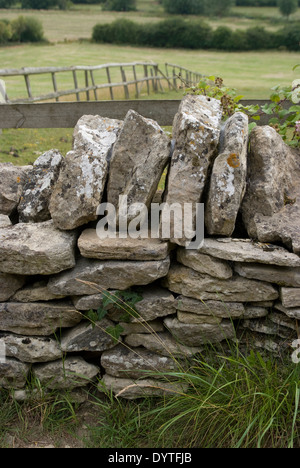 Dry stone wall near North Leigh Roman villa, the remains of a manor house, 1st to 3rd century AD, North Leigh, Oxfordshire - Stock Photo